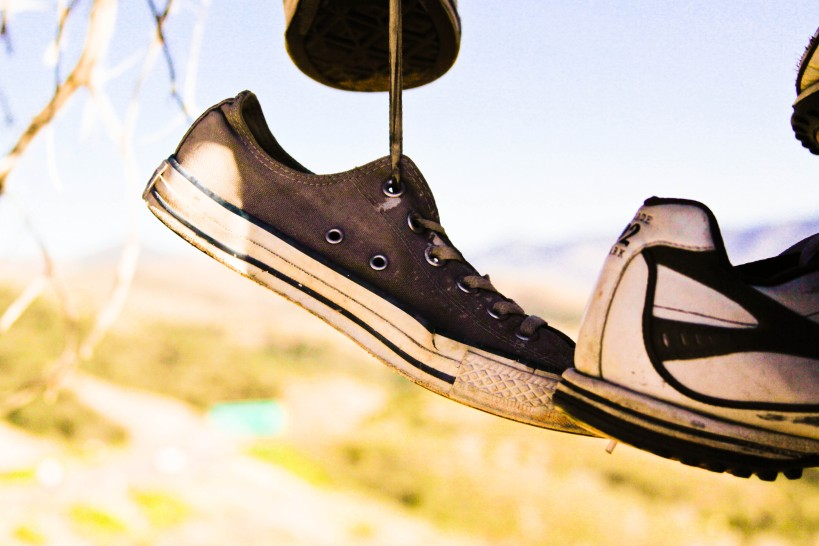 Shoe hanging from tree by shoelace