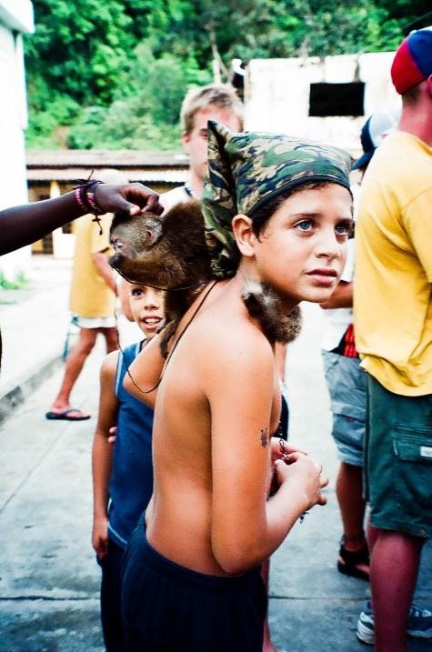 Venezuela monkey