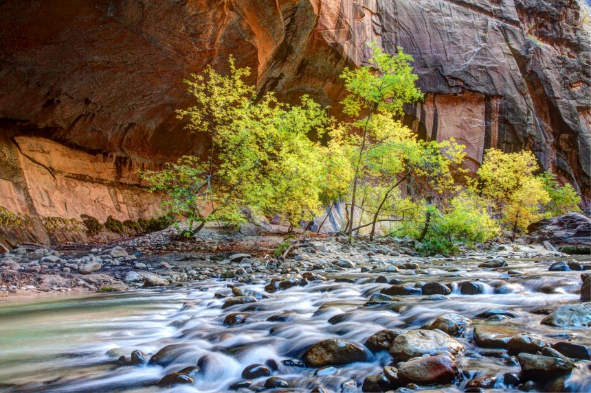 Zion National Park Fall Color